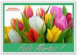 feliz martes con tulipanes