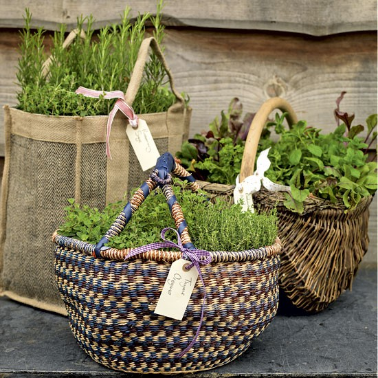 Ideas herb garden baskets for Garden planter ideas