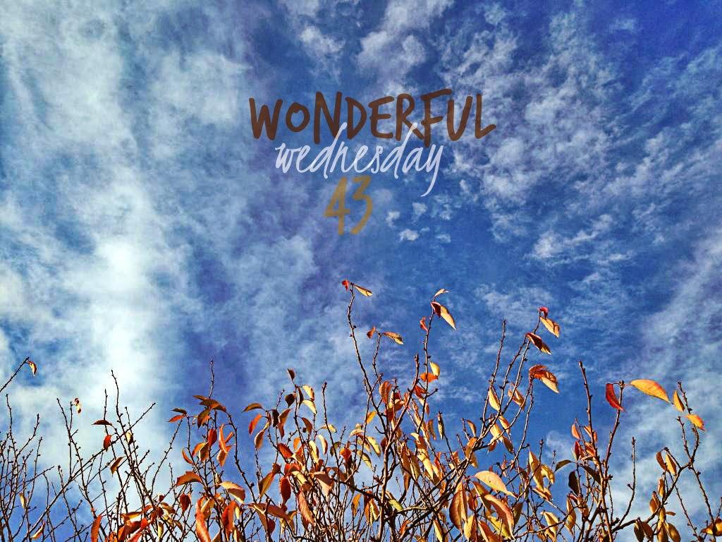 Wonderful Wednesday #43