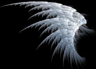 Jenazah diLindungi Sayap Malaikat