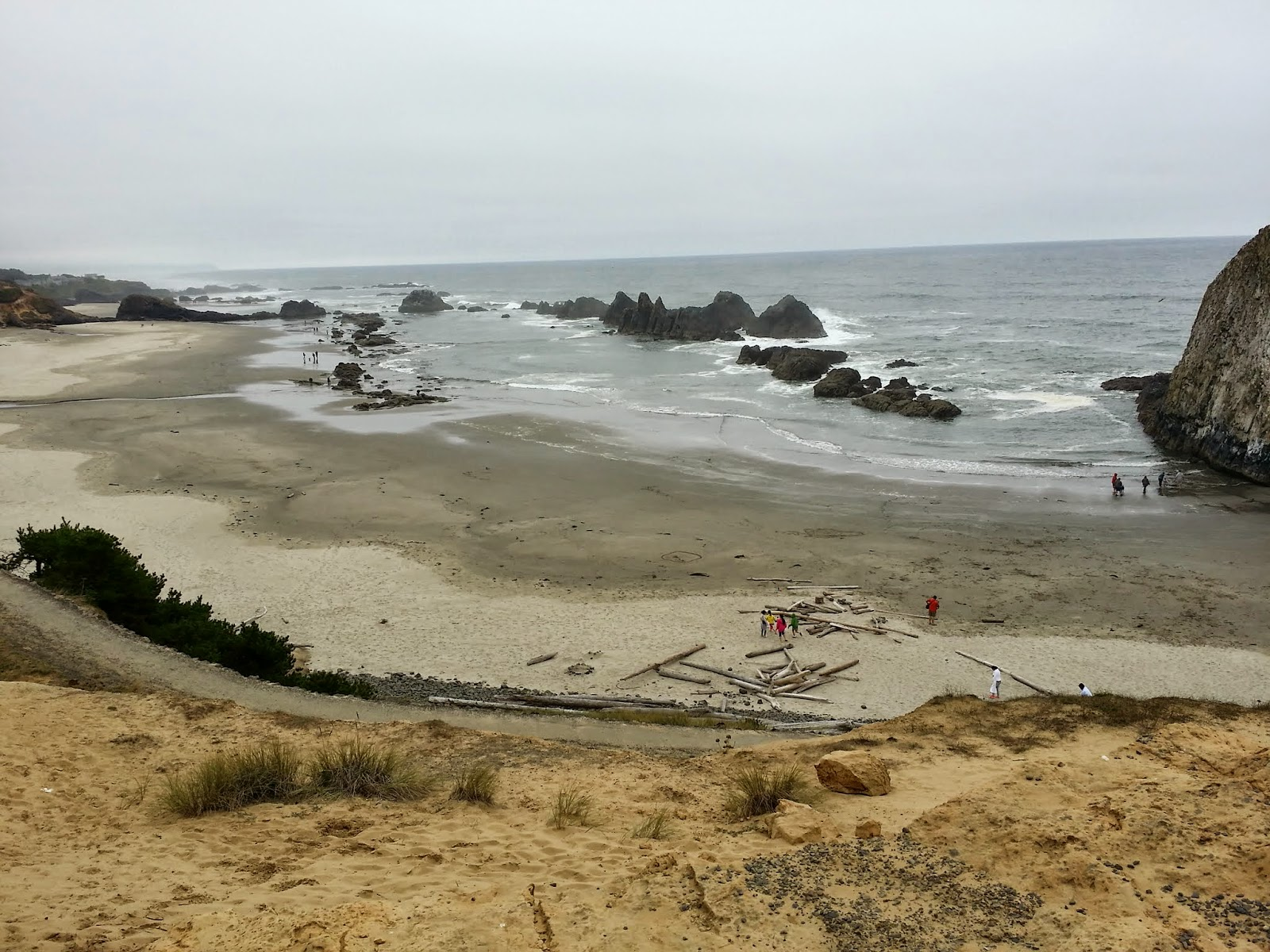 overview of beach at Seal Rock State Recreation Site