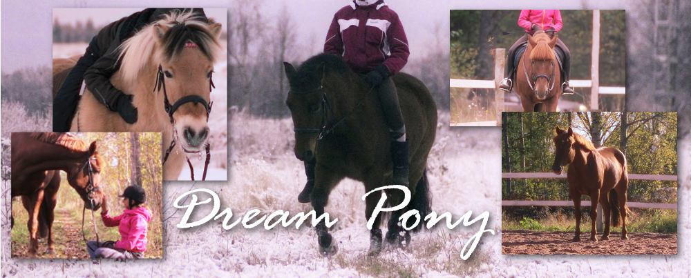 Dream Pony