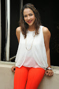 Lakshmi Manchu at Chandamama Kathalu-thumbnail-16