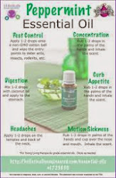 Try Peppermint!
