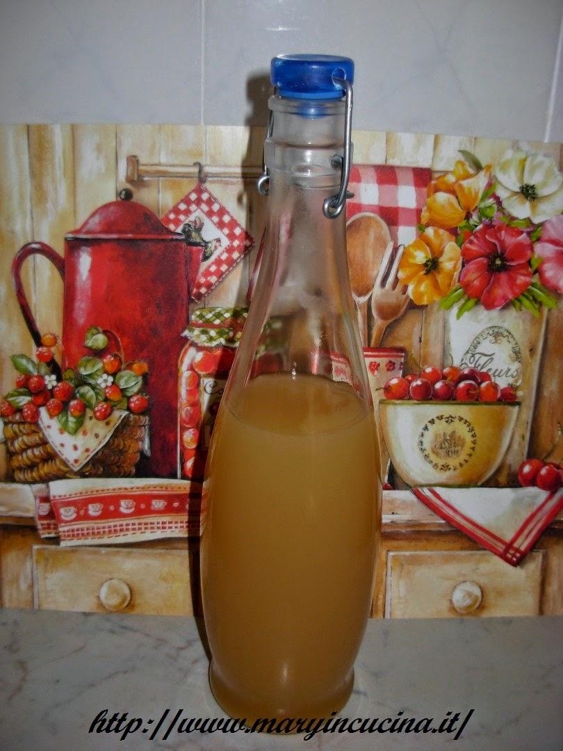bevanda di mela e zenzero