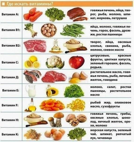 Роль витаминов для организма человека