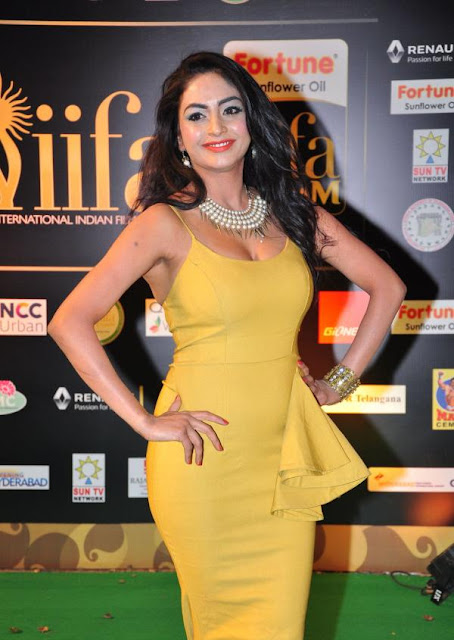 Pooja Sri Photos at IIFA Utsavam Awards 2016
