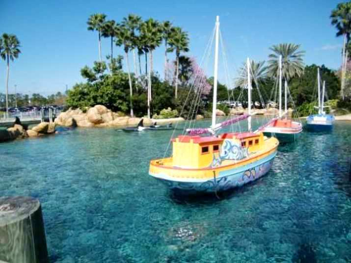 Sea world orlando florida best honeymoon destinations in usa for Unique honeymoon destinations usa