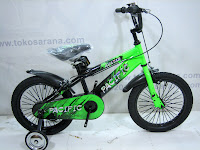 16 Inch Pacific Avatar Kids Bike