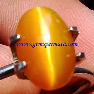 Natural Opal Cat Eye Honey Color