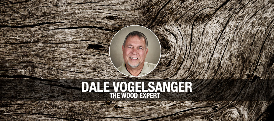 Dale Vogelsanger