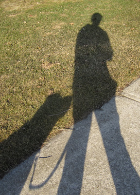 This is a picture of the shadows of puppy Romero and his handler as they walk down the sidewalk. It is late afternoon, so the shadows are long, stretching across the sidewalk and onto the grass that is just starting to turn green. The person's shadow is on the right side of the picture, slightly ahead of Romero's shadow. Romero's shadow is looking up towards his handler as he trots along beside her. The shadow of the leash hangs gently between the two.