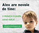 Campania pentru Alexandru!