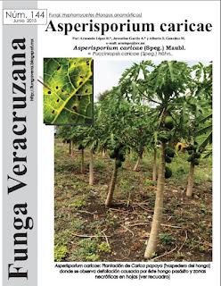 http://fungavera.com/fungavera/funga pdf/144 Asperisporium caricae.pdf
