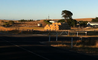 Hay bales and farm shed