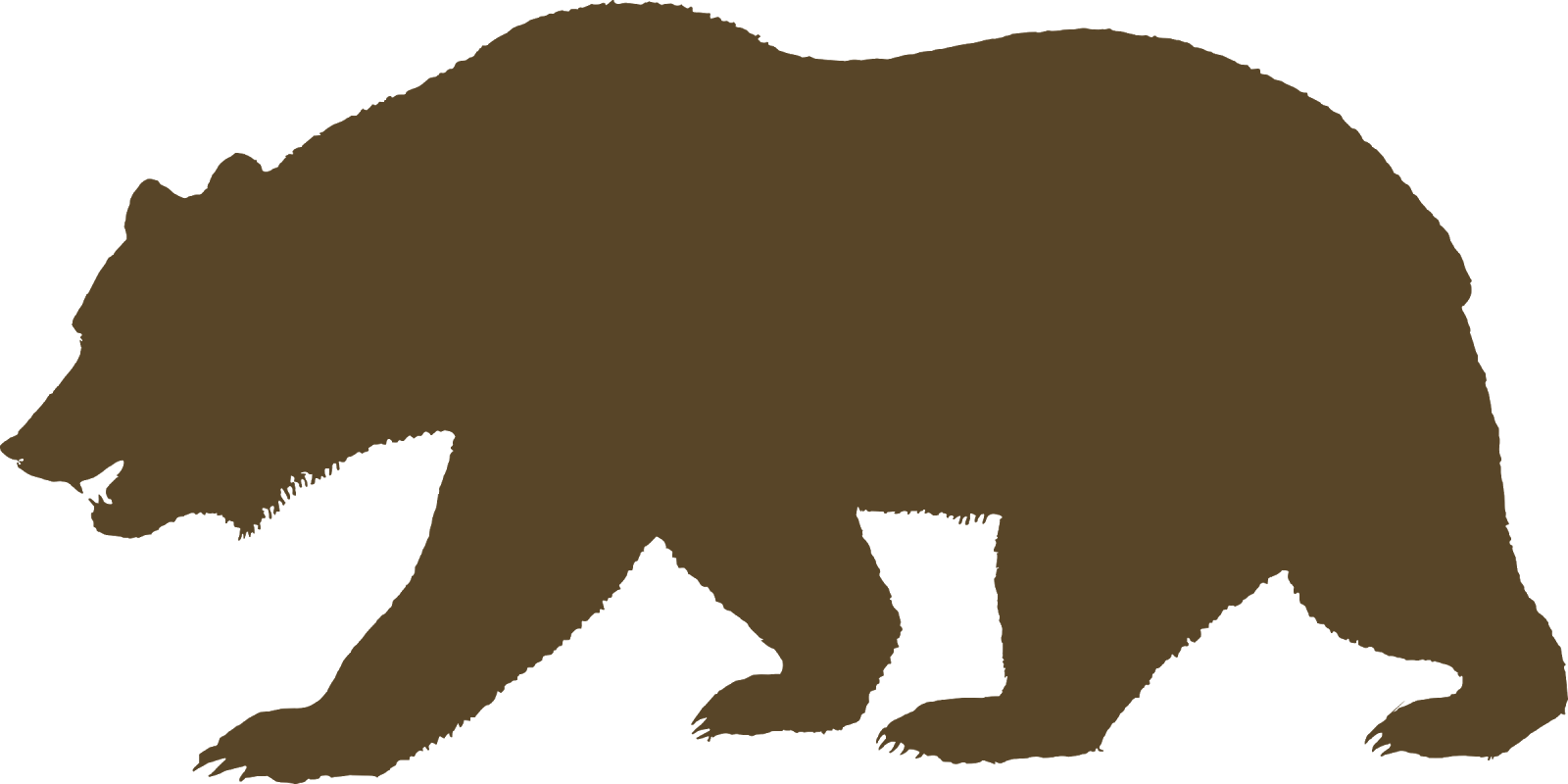 California Grizzly Bear Design