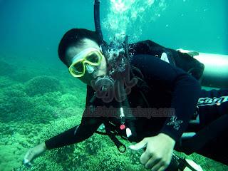 Scuba Diver Surabaya
