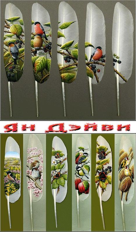 Картины на перьях-Ян Дэйви
