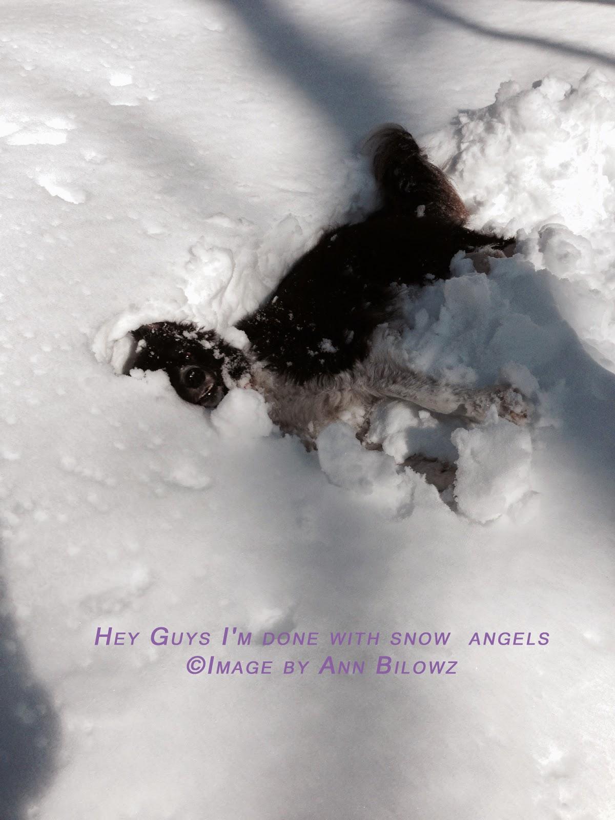 Ben making snow angels