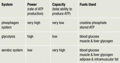 Optimizing Training Part 2: Lactate and Ventilatory Threshold Training