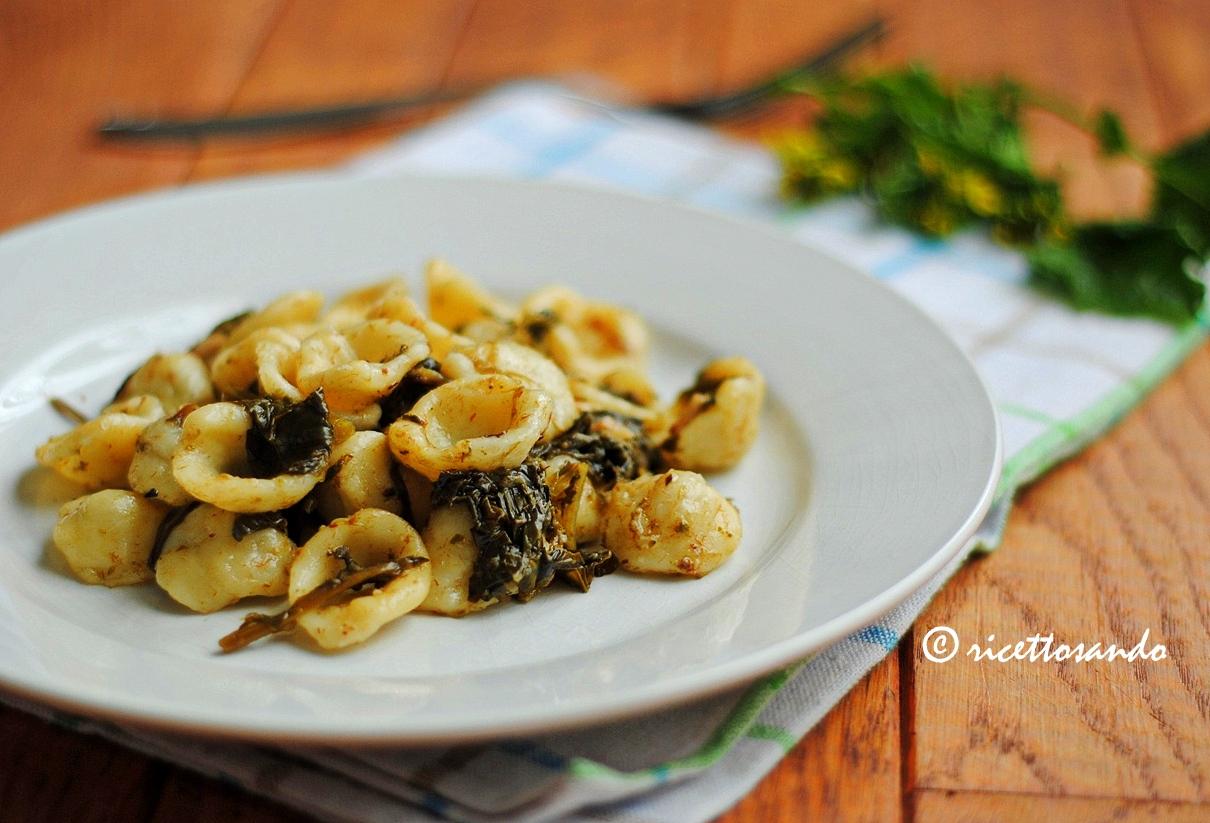 Orecchiette alle cime di rapa ricetta primi piatti tradizionali