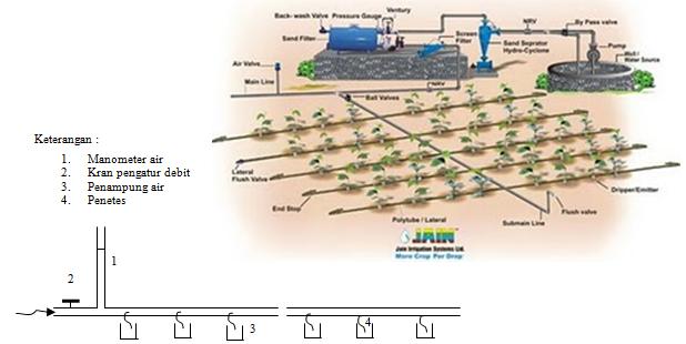 Berkah Seorang Petani Irigasi Tetes Drip Irrigation