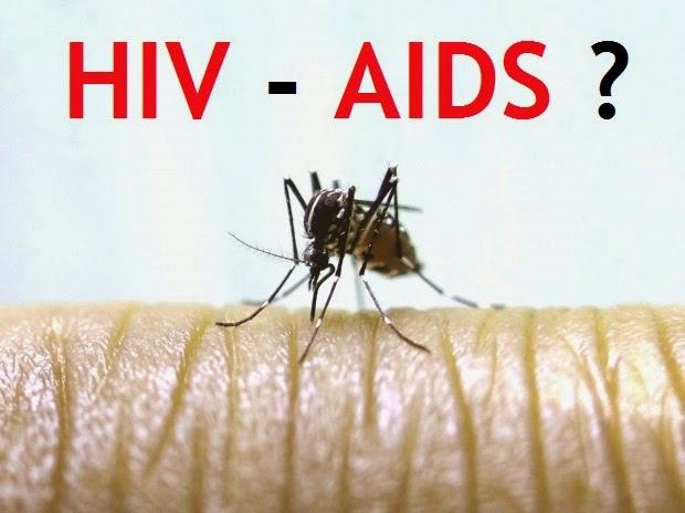 gigitan-nyamuk-HIV-AIDS-Malaria