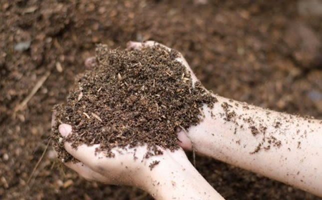 Principais solos da Amazônia