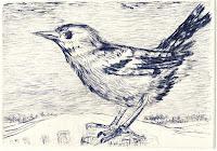 Birgit Horota-Müller: Wintervogel, Kaltnadelradierung, 7,6 x 11 cm, 2012