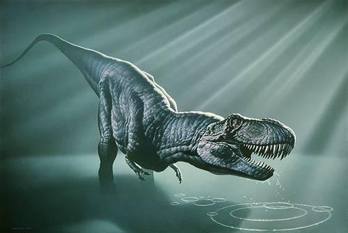 Fossils antiques tyrannosaurus rex for Tyranosaurus rex