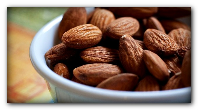 Protein from almonds