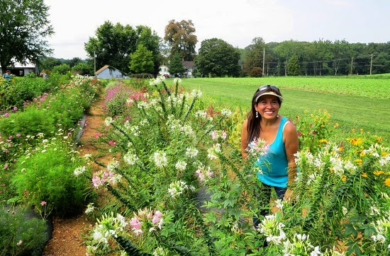 A woman amid a flower garden at Larriland Farm
