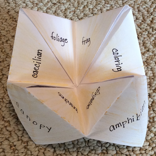 vocabulary fortune teller