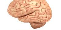 Penyebab Kerusakan Otak
