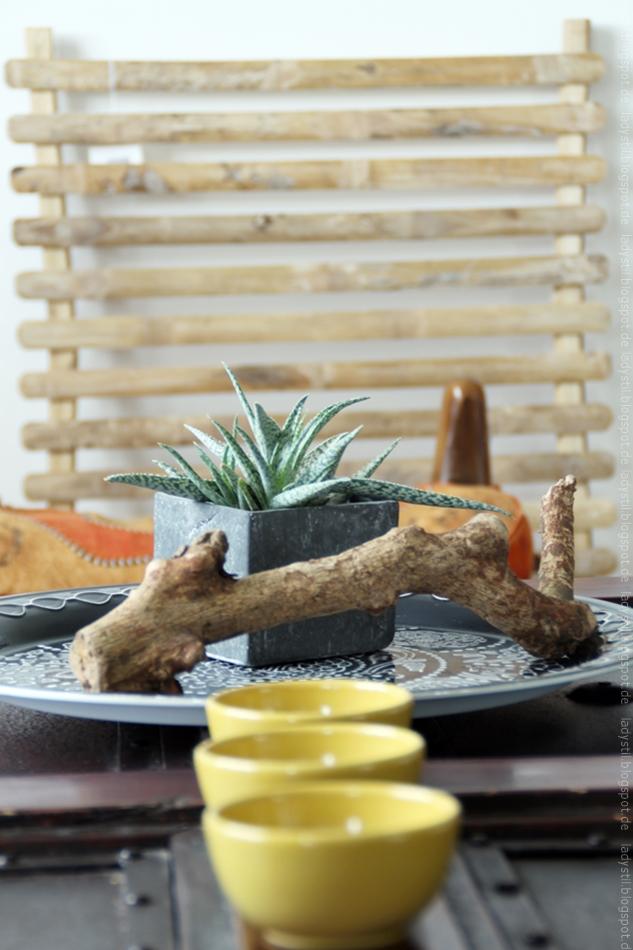 Kaktee auf einem marokkanischen Tablett vor einem Wandboard von TineK