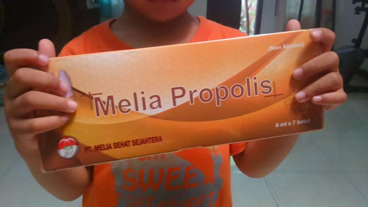 Box Melia Propolis