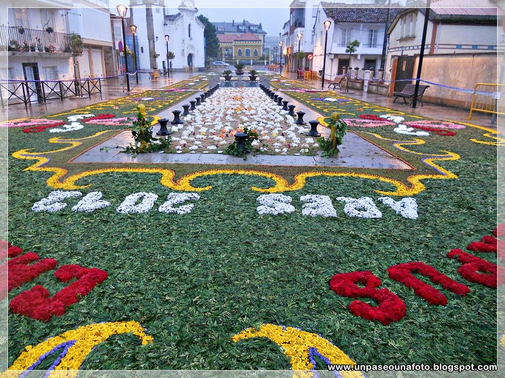 un paseo una foto alfombras florales ares 2012 a coru a