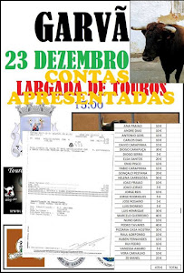 LARGADA TOURO NA RUA 2017
