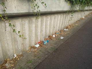 Rubbish on Our Walk