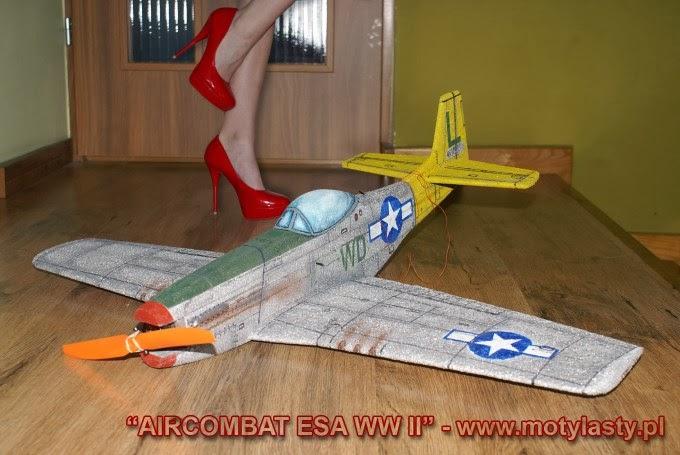 P-51D MUSTANG ESA