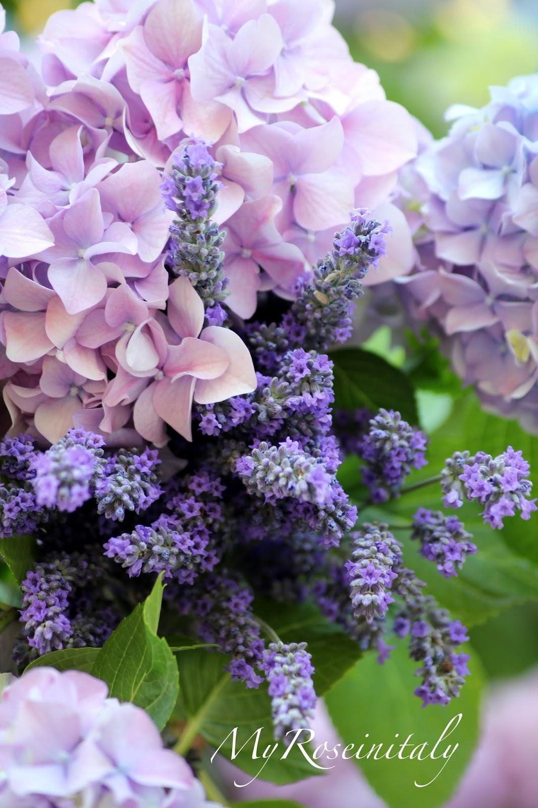 My roseinitaly un bouquet di ortensie e lavanda for Progetta il mio mazzo