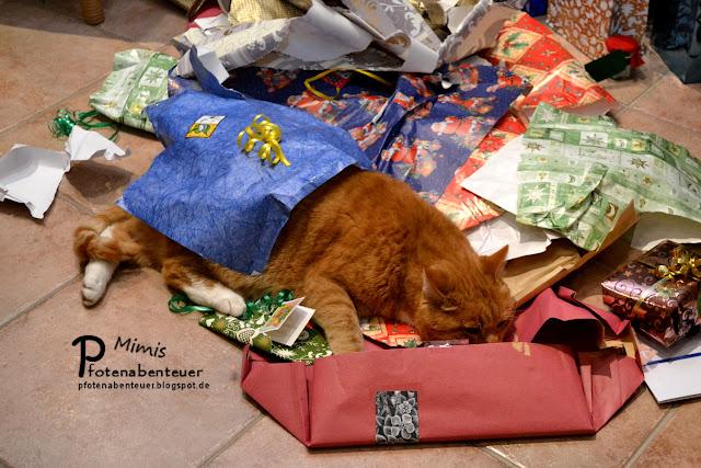 Katze Mimi liegt an Weihnachten inmitten eines Geschenkpapierbergs