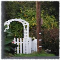 photo of a white trellis