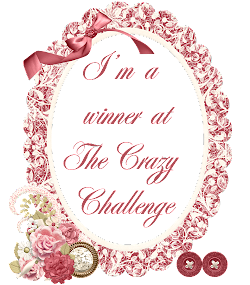 Winner at the crazy challenge