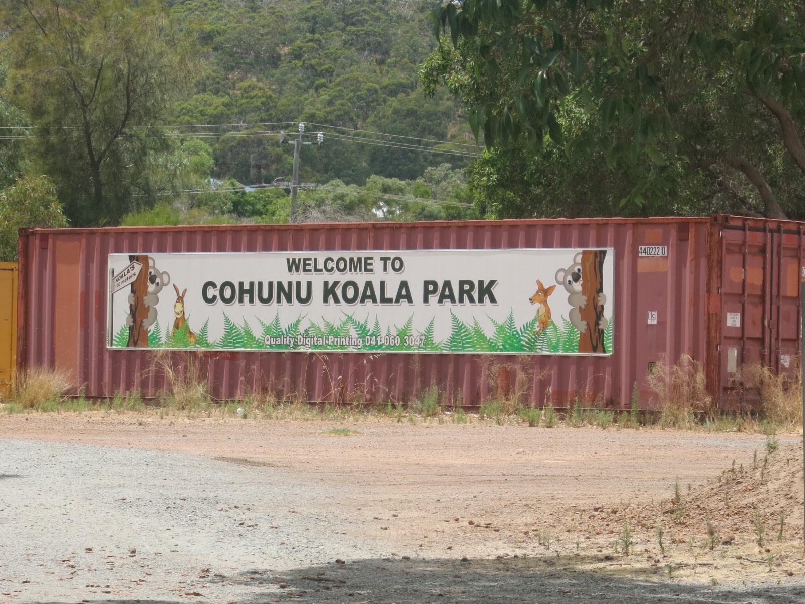 travel cohunu koala park. Black Bedroom Furniture Sets. Home Design Ideas