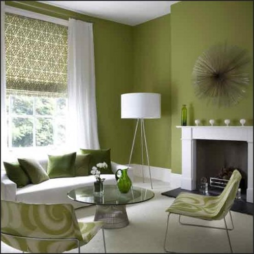 Green Interior Paint Design Ideas 500 x 500