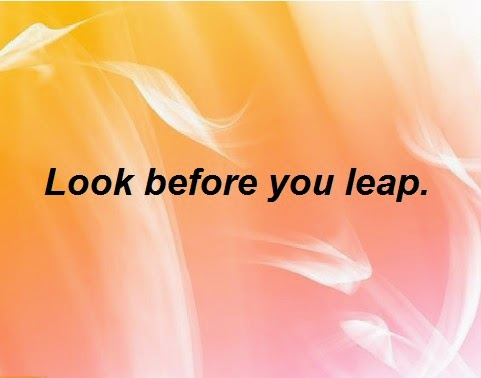 look before you leap meaning in english