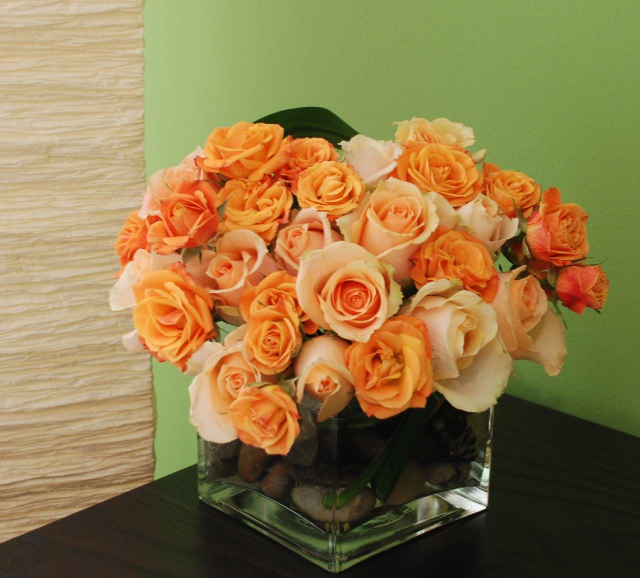 Trandafiri#1