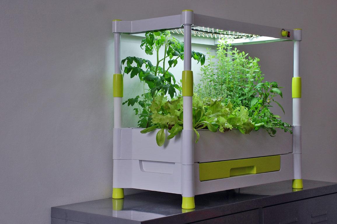 produkt testwelt greenyou g rtnern in den eigenen vier. Black Bedroom Furniture Sets. Home Design Ideas