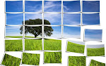 Προγράμματα Περιβαλλοντικής Εκπαίδευσης